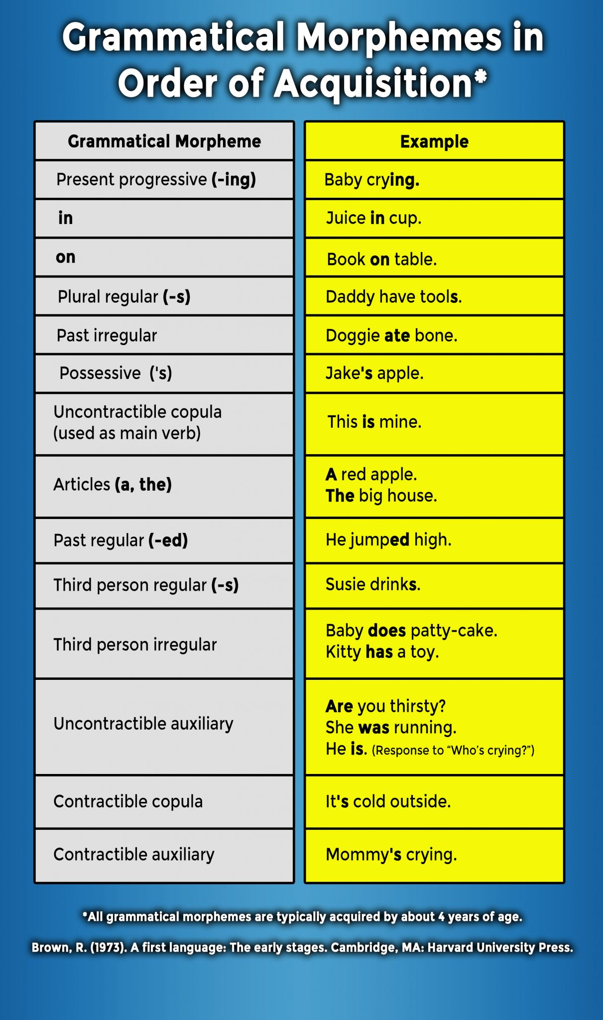 Grammatical Morphemes in Order of Acquisition 1211x2048 1